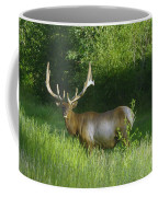 A Big Wide Rack  Coffee Mug