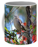 A Bird Enjoying The View Coffee Mug