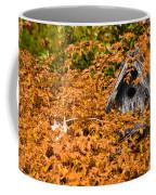A Bird House Sits Empty In Fall Coffee Mug