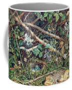 A Birds Nest Among Brambles Coffee Mug