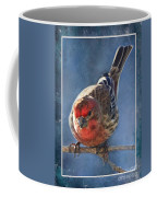 A Blue Morning Housefinch Coffee Mug