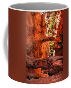 A Bridge Coffee Mug by Robert Bales