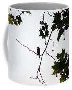A Brown Thrasher Sings In Sycamore Tree Coffee Mug