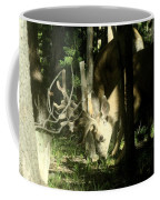 A Buck Deer Grazes Coffee Mug