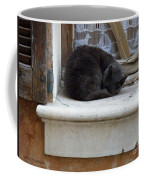 A Circled Up Cat  Coffee Mug by Lainie Wrightson