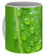 A Cleansing Morning Rain Coffee Mug