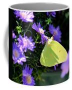 A Clouded Sulphur On Lavender Mums Coffee Mug