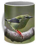 A Dash Of Red... Coffee Mug