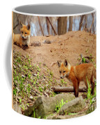 A Day At The Den Coffee Mug