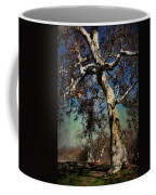 A Day Like This Coffee Mug by Laurie Search