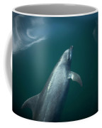 A Dolphin Swims In The Bay Coffee Mug