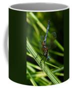 A Dragonfly Coffee Mug