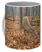 A Eight Point Buck 1261 Coffee Mug