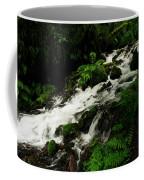 A Fern On An Isalnd  On Wahkeena Creek Coffee Mug