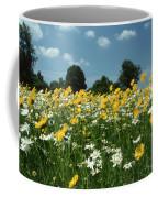 A Field Of Spring Coffee Mug