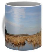 A Fine Place For Ducks Coffee Mug