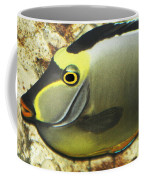 A Fish From The Ocean Coffee Mug