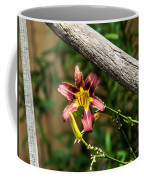 A Flower Frame Coffee Mug