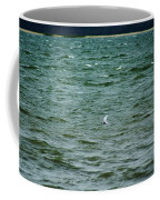 A Forster Tern Fighting The Winds Out At Sea Coffee Mug