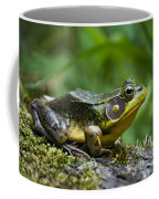A Frog Is Forever Coffee Mug