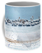 A Gathering Of Pelicans Coffee Mug