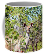 A Giant Hides Coffee Mug