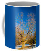A Giant Sleeps Coffee Mug