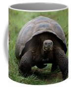 A Giant Tortoise Walks Along The Rim Coffee Mug