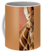 A Giraffe Coffee Mug