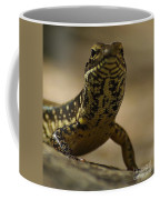 A Golden Skink Coffee Mug