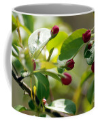 A Group Of Red Tree Flowers Coffee Mug