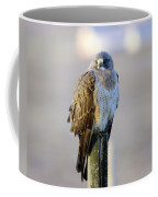 A Hawk On A Fence Post  Coffee Mug