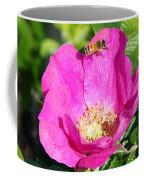 A Hornet And Beach Rose Coffee Mug