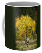 A Horse And A Willow Tree Coffee Mug