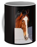 A Horse Is A Horse Of Course By Diana Sainz Coffee Mug