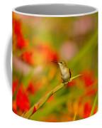 A Humming Bird Perched Coffee Mug
