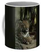 A Jaguar's Gaze Coffee Mug