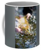 A Large Cutthroat Being Released Coffee Mug
