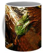 A Leaf Washed Over Coffee Mug by Jeff Swan