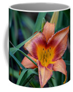 A Lily's Golden Heart Coffee Mug