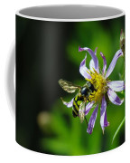 A Little Nectar Seeking Fruit Fly Coffee Mug
