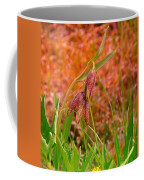 A Little Spring Miracle Coffee Mug