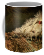 A Long Winter's Nap Coffee Mug by Lois Bryan