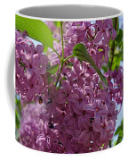 A Lovely Color Coffee Mug