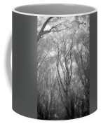 A Low Angle View Of A Ironwood Coffee Mug