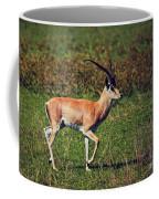 A Male Impala In Ngorongoro Crater. Tanzania Coffee Mug
