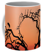A Marabou Stork, Leptoptilos Coffee Mug