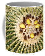 A Mexican Golden Barrel Cactus With Blossoms Coffee Mug