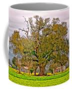 A Mighty Oak Coffee Mug