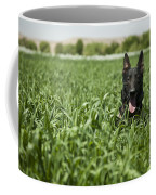 A Military Working Dog Sits In A Field Coffee Mug by Stocktrek Images